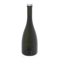 """750ml antiekgroene bubbeltjeswijn-/bierfles """"Tosca"""" kroonkurk zilver"""