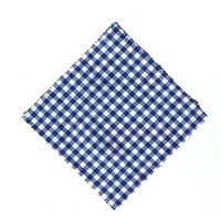Stof overlapje karo blauw 12x12cm incl. textiel lus