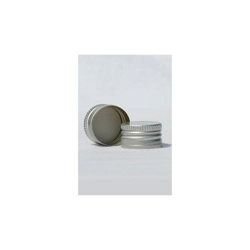 Screw cap PP28 silver with thread